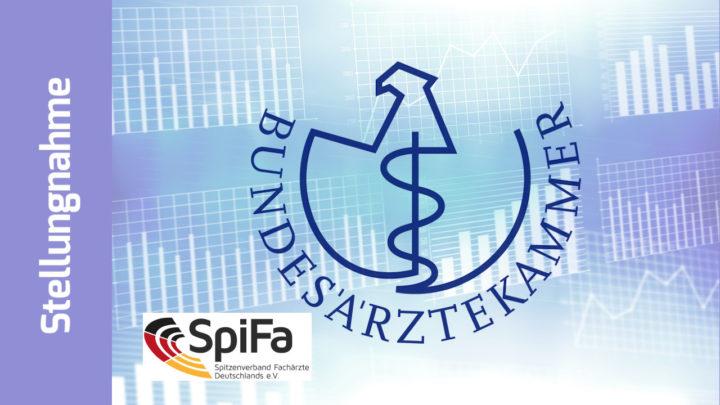 SpiFa zur BÄK-Wahl: Verbände und Bundesärztekammer müssen stärker zusammenarbeiten