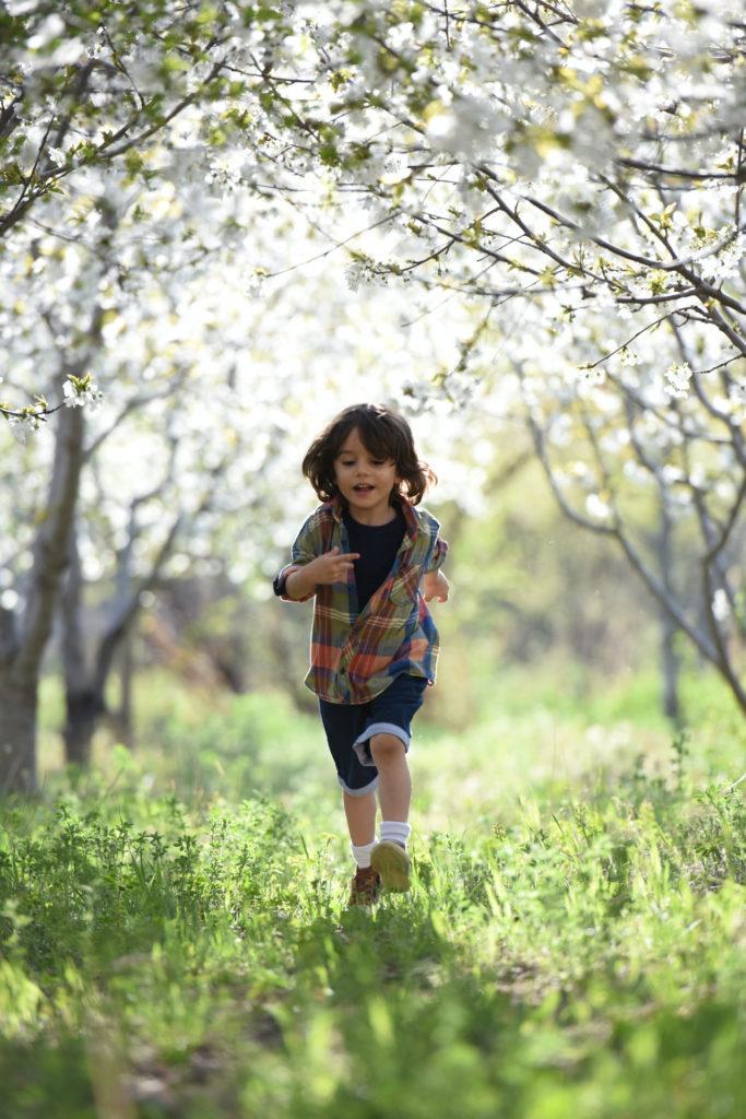Ein sommerlich gekleideter Junge im Grundschulalter rennt auf der Wiese auf den Fotografen zu